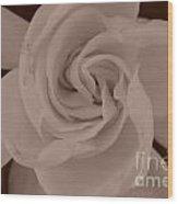 Pretty Flower Sepia Wood Print