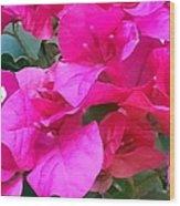Pretty In Pink Wood Print