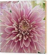 Pretty In Pink Wood Print by Karen Grist