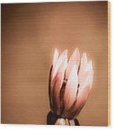 Pretty Lonely Wood Print