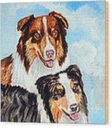 Pretty Pair - Australian Shepherd Wood Print by Lyn Cook