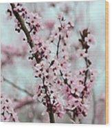 Pretty Pink Flowering Tree Wood Print