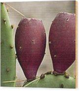 Prickly Pear Cactus Fruit Wood Print