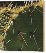 Prickly Pear Dangerous Beauty - Greeting Card Wood Print