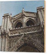 Primate Cathedral  Wood Print