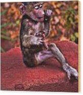 Primate Footsie Games Wood Print