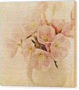 Primrose Delights Wood Print by Linde Townsend