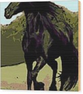 Prince Of Equus Wood Print