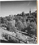 Princes Street Gardens Edinburgh Scotland Uk United Kingdom Wood Print by Joe Fox