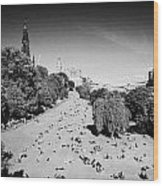 Princes Street Gardens On A Hot Summers Day In Edinburgh Scotland Uk United Kingdom Wood Print