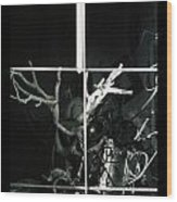 Prospect 1- C Wood Print
