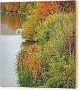 Prosser Autumn Docks Wood Print by Carol Groenen