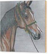 Proud Arabian  Wood Print
