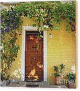 Provence Door Number 1 Wood Print