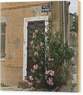 Provence Door Number 9 Wood Print