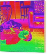 Psychedelic Doggy Love Wood Print