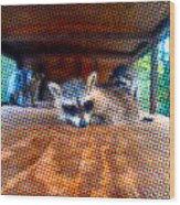 Psycodelic Furries Wood Print