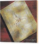 Pterodactylus Elegans Wood Print
