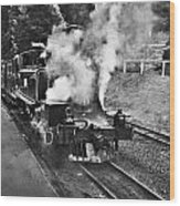Puffing Billy Black And White Wood Print