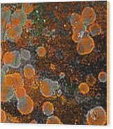 Pumpkin Abstract Wood Print
