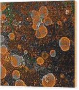 Pumpkin Abstract Square Wood Print