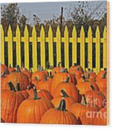 Pumpkin Corral Wood Print