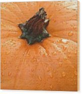 Pumpkin Dew Wood Print