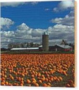 Pumpkin Farm Wood Print