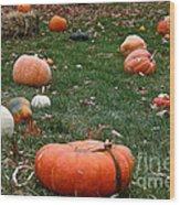 Pumpkin Field Wood Print