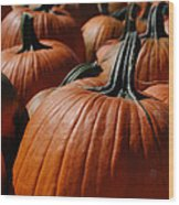 Pumpkin Harvest 1 Wood Print