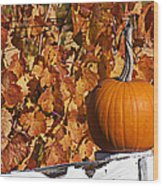 Pumpkin On White Fence Post Wood Print