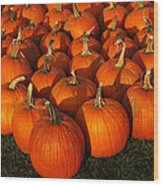 Pumpkin Pie Anyone Wood Print