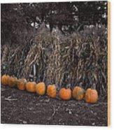 Pumpkins And Cornstalks Wood Print