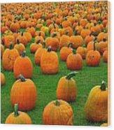 Pumpkins Forever Wood Print