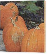 Pumpkins Galore V2 Wood Print