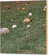 Pumpkins Wood Print by Susan Herber