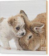 Pup And Rabbit Wood Print