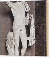 Pupienus Maximus (c178-238) Wood Print