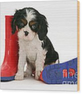 Puppies With A Childs Rain Boots Wood Print