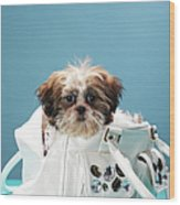 Puppy Sitting In Handbag Wood Print