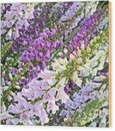 Purple And White Foxglove Square Wood Print