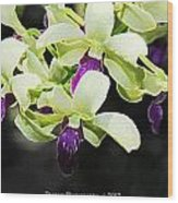 Purple And White Orchid Accent Fx  Wood Print