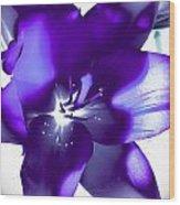 Purple Blast Wood Print
