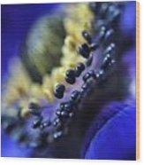 Purple Bulb Flower Wood Print