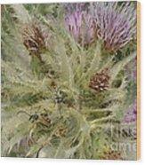 Purple Cacti With Pollinated Beetle Wood Print
