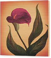 Purple Calla Lily - Square Painting Wood Print