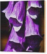 Purple Cascade Wood Print