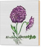 Purple Chrysanthamums Wood Print