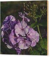 Purple Cluster Of Flowers Wood Print