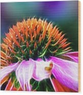 Purple Coneflower Delight Wood Print by Bill Tiepelman